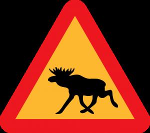 znak drogowy łoś